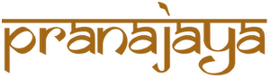 Yogamatten Shop von pranajaya